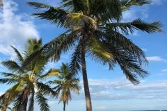 PLAŻA-Key-West-oczami-architekta-autor-foto-LEONARDOPPA